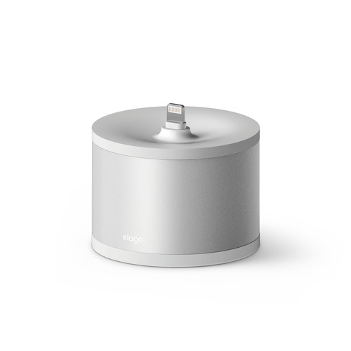 D stand charging station- Silver
